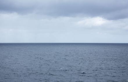 Across the Tasman