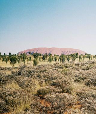 Far from Sydney: the 'dead heart' on film